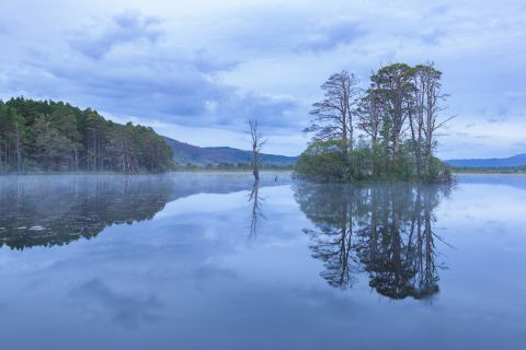 Loch Mallachie during blue hour - Cairngorms National Park, Scotland